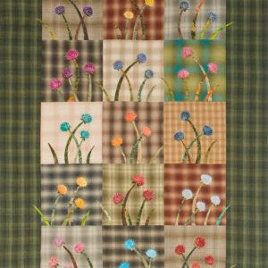 Bright pincushion flowers